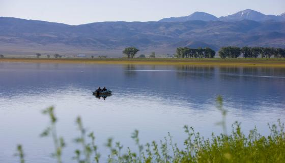 Topaz Lake 1